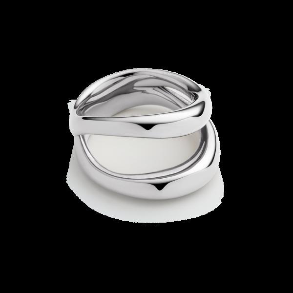 Ring Horizon Waves Silver